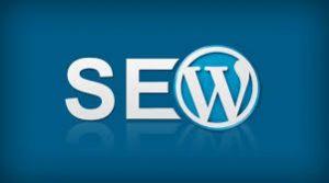 SEO WordPress Pune